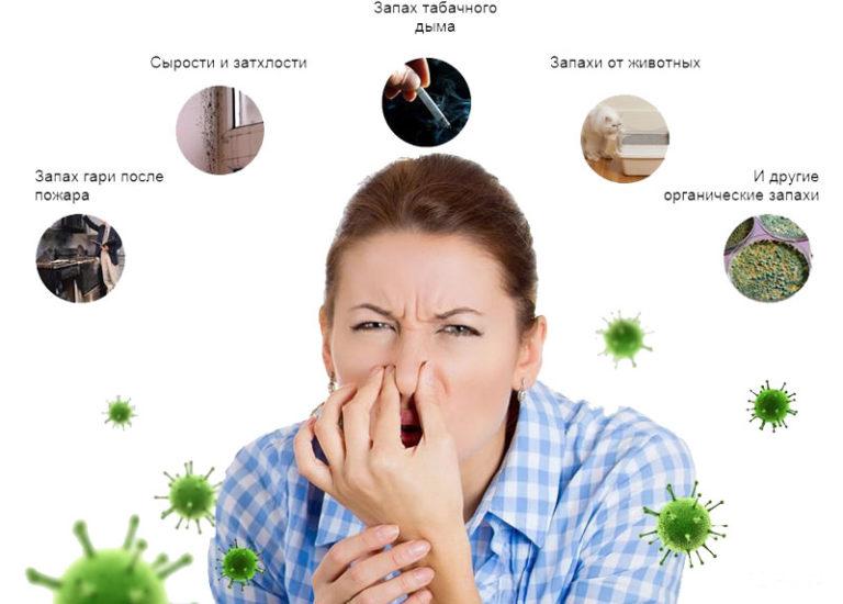 устранение запахов биологическим путем